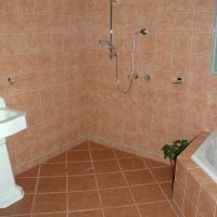 Accessible Shower 1.JPG
